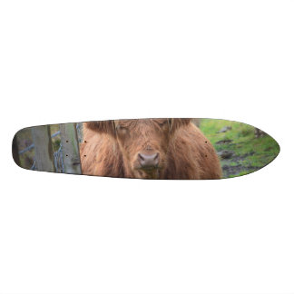 Cute Highland Cow by Fence Custom Skateboard