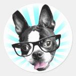 Cute! Hipster Boston Terrier Round Sticker