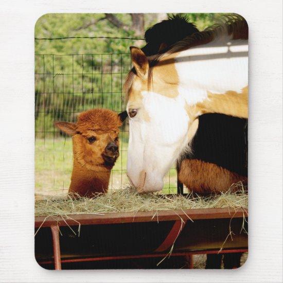 Cute Horse Alpaca Mousepad
