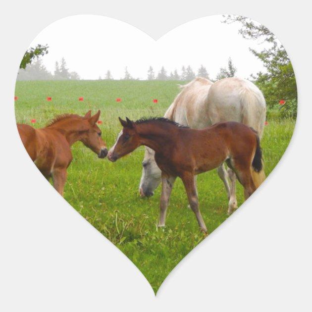 Cute Horse Foals Heart Sticker Zazzle Com