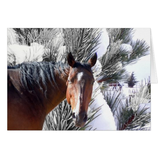 Cute Horse Lover Western Christmas Card