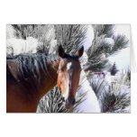 Cute Horse Lover Western Christmas Greeting Cards