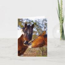 Cute Horse Note Cards
