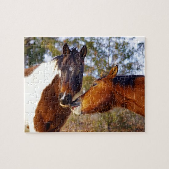 Cute Horse Puzzle with Gift Box