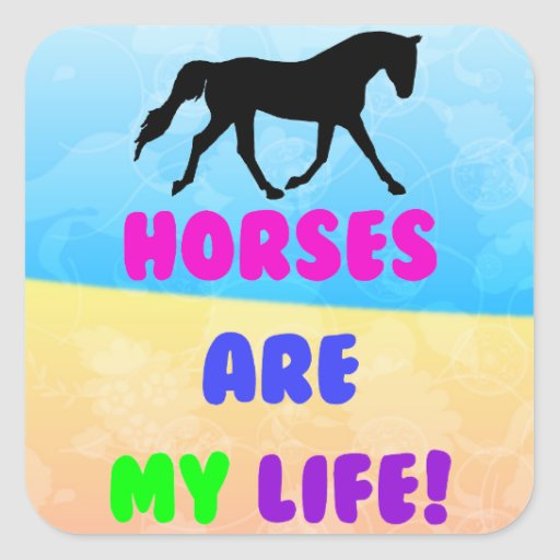 Cute Horses Are My Life Stickers