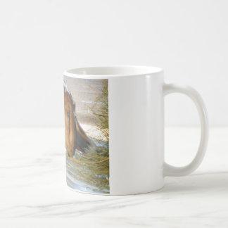 Cute hungry goat coffee mug