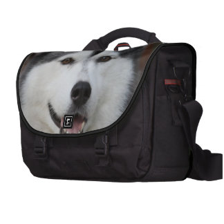 Cute Husky Bag For Laptop