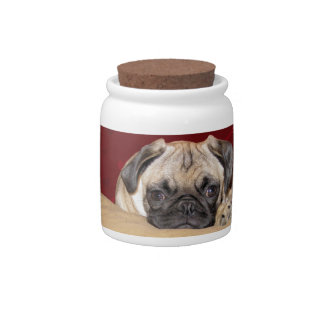 Cute iCuddle Pug Puppy Candy Jars