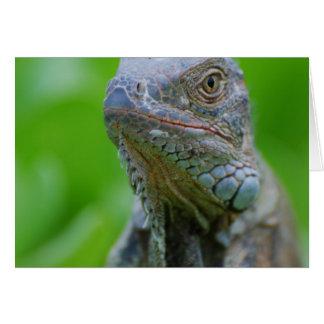 Cute Iguana Greeting Card