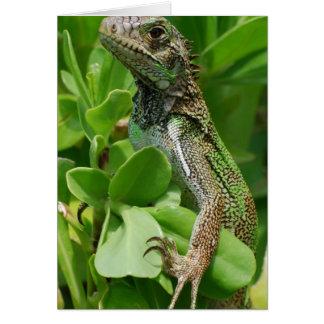Cute Iguana in a Bush Greeting Card