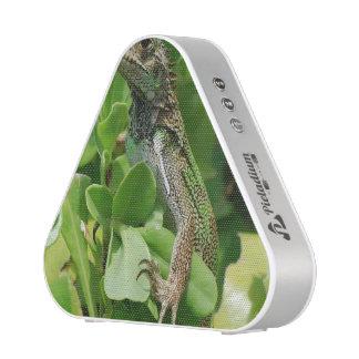 Cute Iguana in a Bush Bluetooth Speaker