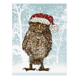 Cute Illustration of an Owl wearing a Santa Hat Postcard