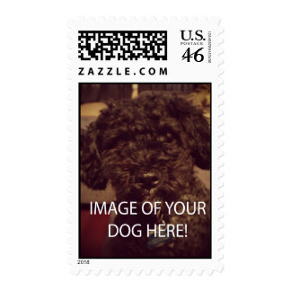 Cute image of Your Pet to Customize Stamp!