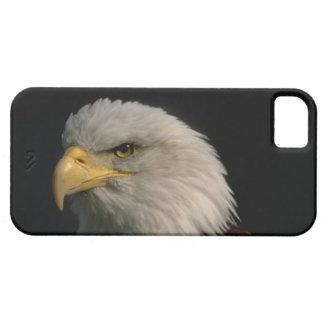 Cute iPhone 5 Cases Beautiful American Eagle