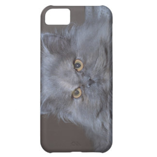 Cute iPhone 5 Cases Beautiful Grumpy Cat