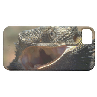 Cute iPhone 5 Cases Beautiful Lizard