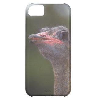 Cute iPhone 5 Cases Beautiful Ostrich