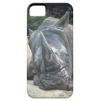 Cute iPhone 5 Cases Beautiful Rhino
