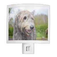 Cute Irish Wolfhound Night Light