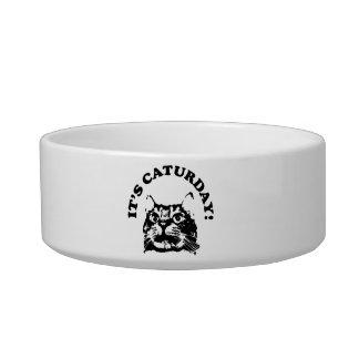 Cute It's Caturday! Pet Bowl