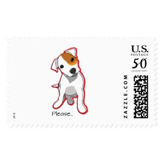 Cute Jack Russell Puppu Postage