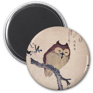 Cute Japanese Smiling Owl Magnet