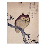 Cute Japanese Smiling Owl Post Card