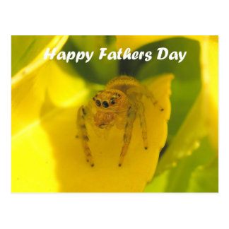 Cute Jumping Spider Happy Fathers Day Postcard