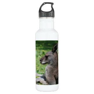 Cute Kangaroo 24oz Water Bottle