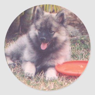 Cute Keeshond Puppy Classic Round Sticker