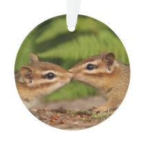 Cute Kissing Baby Chipmunks Ornament