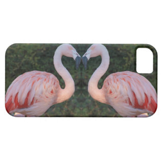 Cute Kissing Flamingo Photography iPhone SE/5/5s Case