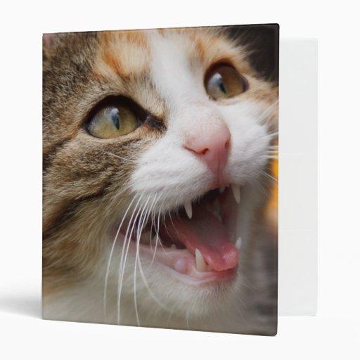 Cute Kitten 3 Ring Binder
