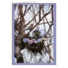 Cute kitten and bird nest Easter or Spring Card