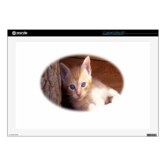 "Cute Kitten Art 17"" Laptop Skins"