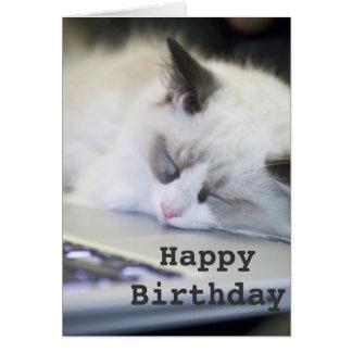 Cute Kitten Asleep Happy Birthday Card Greeting Card