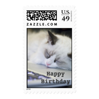 Cute Kitten Asleep Happy Birthday Stamp