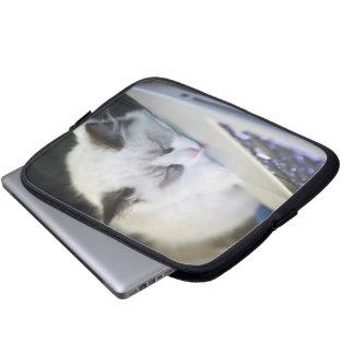 Cute Kitten Asleep on a Laptop Computer Sleeve
