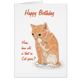 Cute Kitten Birthday card