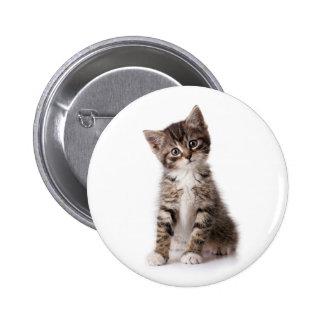 cute kitten button