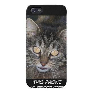Cute Kitten Case For iPhone SE/5/5s