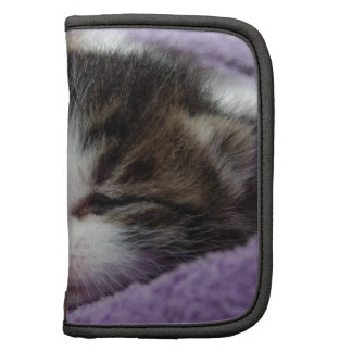 Cute Kitten Cat Folio Planner