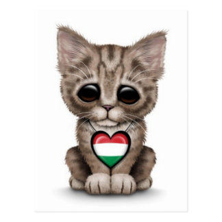 Cute Kitten Cat with Hungarian Flag Heart, white Postcard