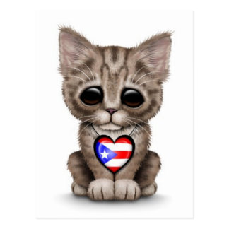 Cute Kitten Cat with Puerto Rico Flag Heart, white Postcard