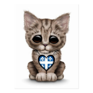 Cute Kitten Cat with Quebec Flag Heart, white Postcard