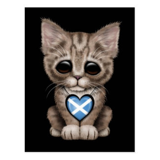 Cute Kitten Cat with Scottish Flag Heart, black Postcard
