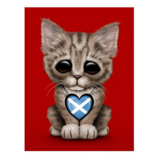 Cute Kitten Cat with Scottish Flag Heart, red Postcard