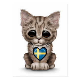 Cute Kitten Cat with Swedish Flag Heart, white Postcard
