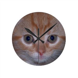 Cute Kitten Round Wallclock