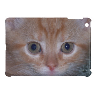 Cute Kitten Cover For The iPad Mini